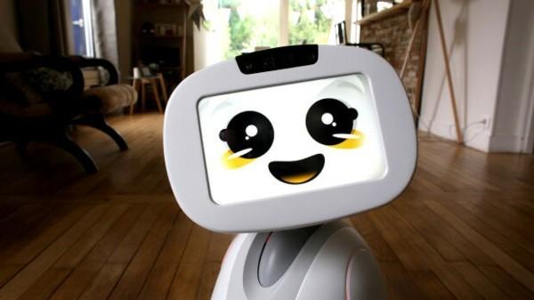 vesta amazon roboter 2019