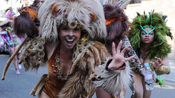 wunderbare tiere karnevalskostüme ideen