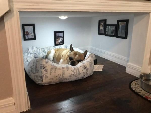 Bett für den Hund Treppenhaus