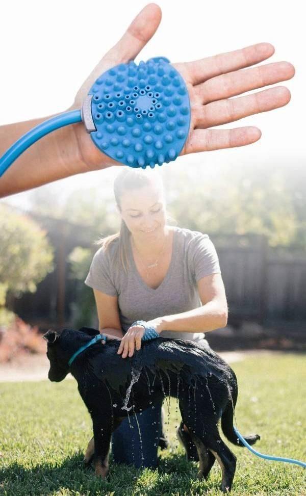 Die besten Smart Home Gadgets für Haustiere aquapaw hunde leicht waschen
