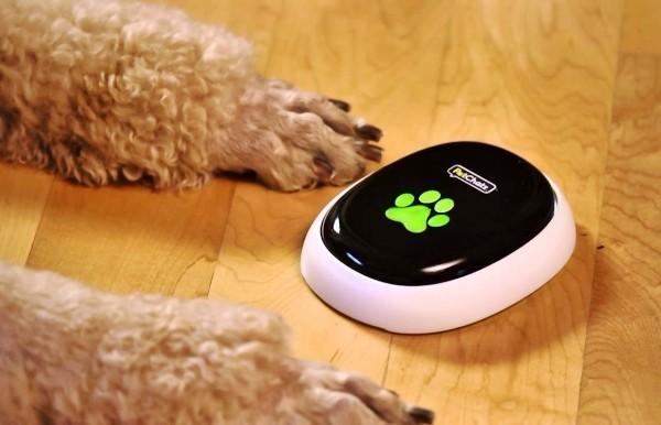 Die besten Smart Home Gadgets für Haustiere petchatz petcall gerät für smarte hunde
