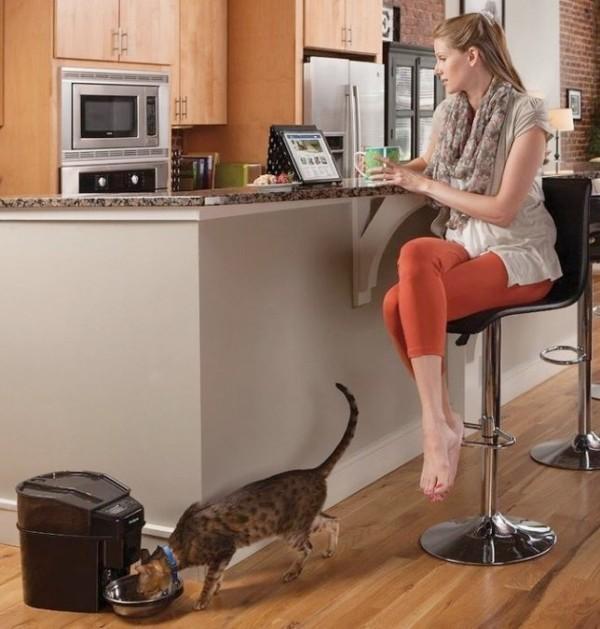 Die besten Smart Home Gadgets für Haustiere petsafe automatischer futternapf