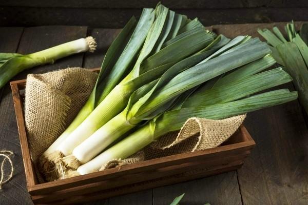 Die besten Suppen-Rezepte für den Winter lauch kartoffel supper gesund und nahrhaft