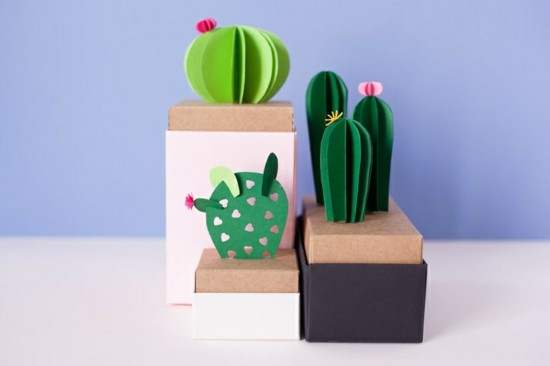 kaktus deko basteln geschenkverpackung