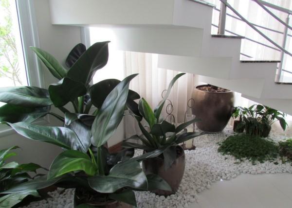kleiner Garten Treppenhaus