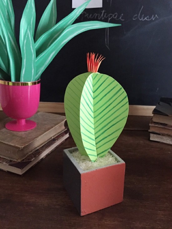 papier kaktus deko