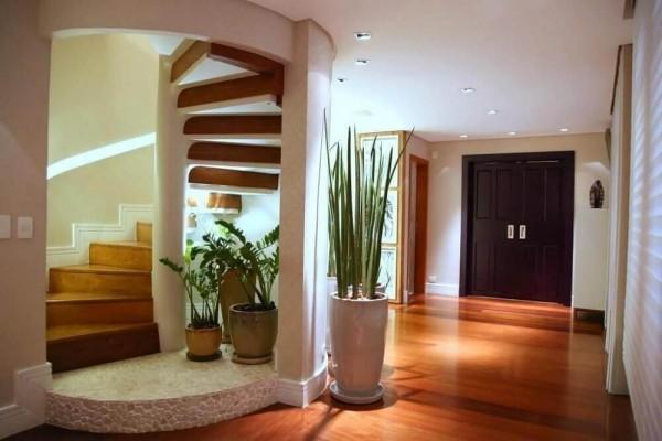 tolle Pflanzer unter einem Treppenhaus