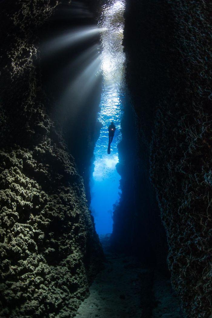 unterwasserbilder mit einem taucher
