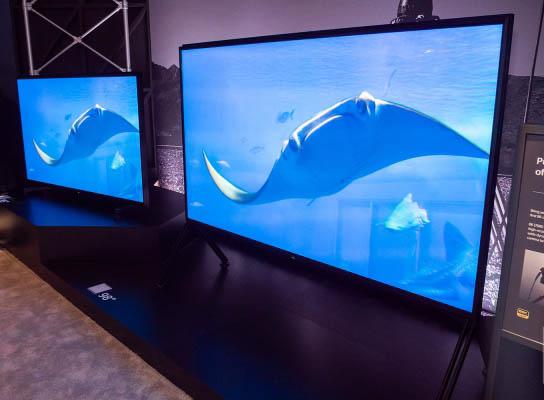 8K TV ein schönes Bild
