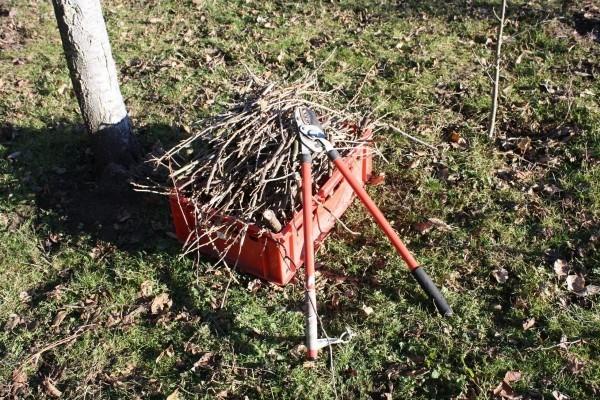Gartenpflege Aufsammeln vom Müll