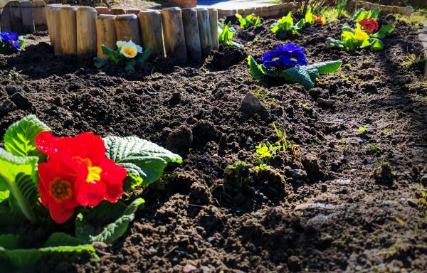 Gartenpflege-das-Bearbeiten-der-Erde
