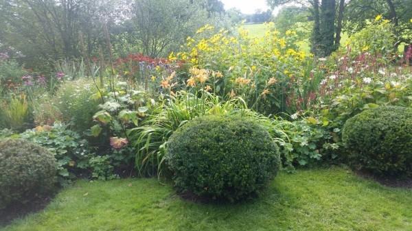 Gartenpflege dekorative Grüne und Gebüsche