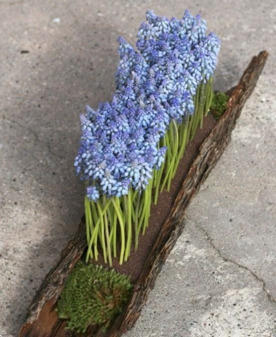 Hyazinthen in Baumrinde schöne Deko Idee im rustikalen Stil