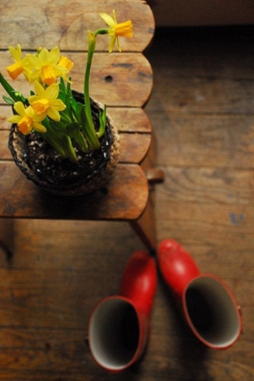 Narzissen Deko Ideen Osterglocken auf dem Esstisch rustikal