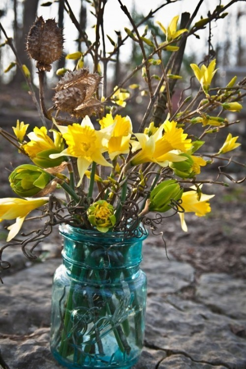 Narzissen Deko Ideen draußen mit trockenen Zweigen im Glas arrangiert
