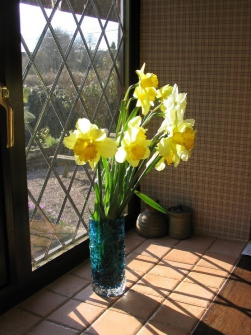 Narzissen Deko Ideen in Vase am Fenster