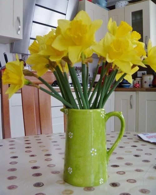 Narzissen Deko Ideen in der Küche in Vase