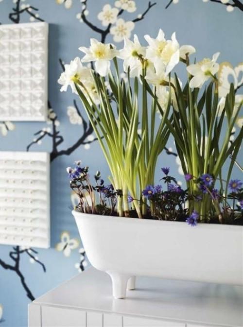 Narzissen in Weiß Deko Ideen mit anderen Frühlingsblumen im Haus