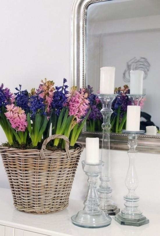 Schöne Hyazinthen verschiedene Farben im Korb vor einem Spiegel weiße Kerzen daneben