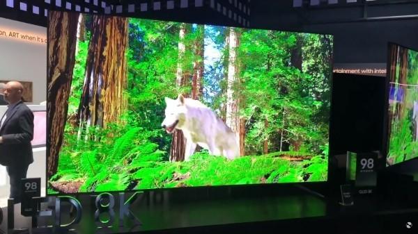 Tierwelt Darstellung 8K TV