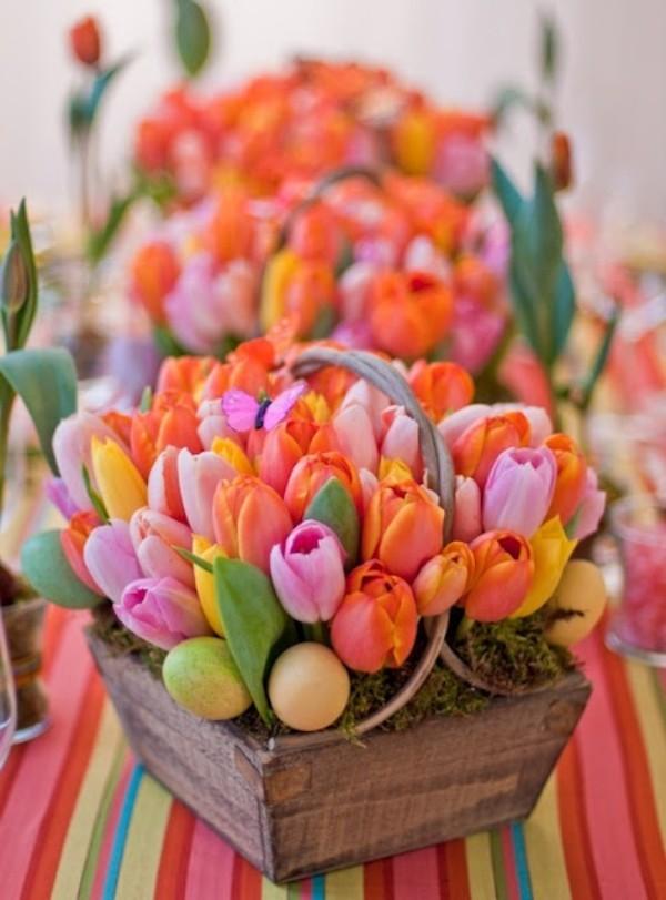 Tulpen im Interieur bunte Blüten in Holzkästen