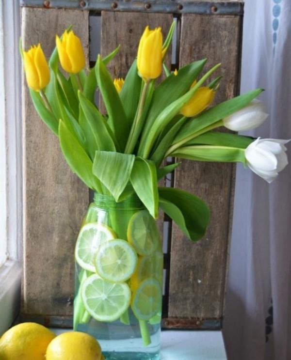 Tulpen im Interieur gelbe und weiße Blüten im Glas mit Zitronenscheiben