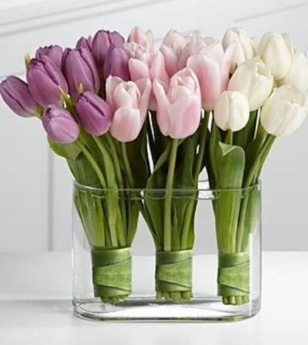 Tulpen im Interieur in einem Glasbehälter weiß rosa und hellviolett