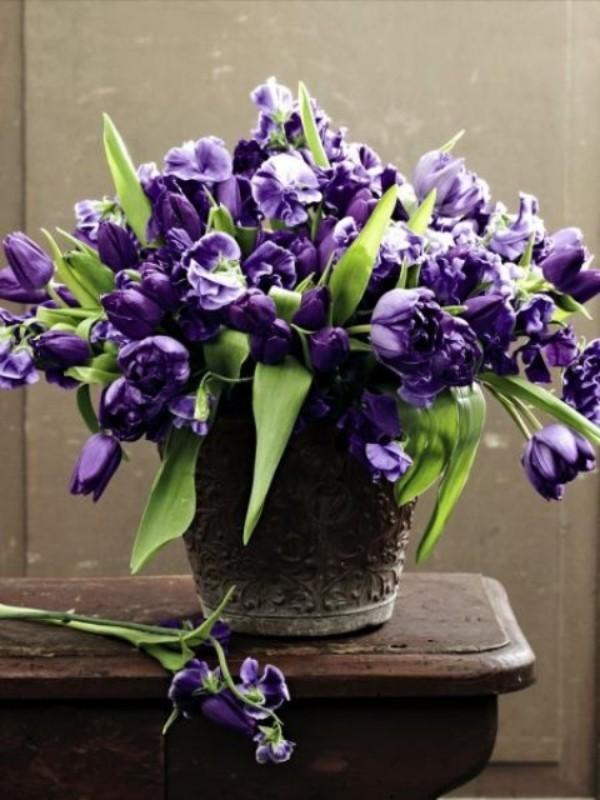 Tulpen im Interieur lila Blüten im Retro-Behälter