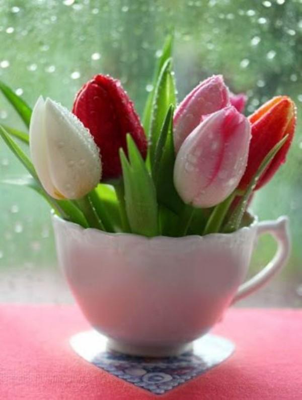 Tulpen im Interieur mehrfarbig in weißer Tasse