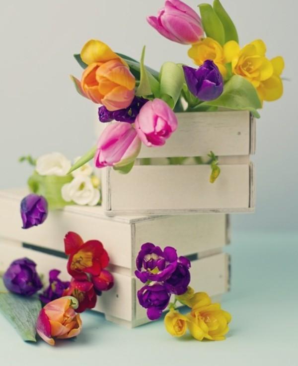 Tulpen im Interieur verschiedenfarbige Blüten weiße Kisten