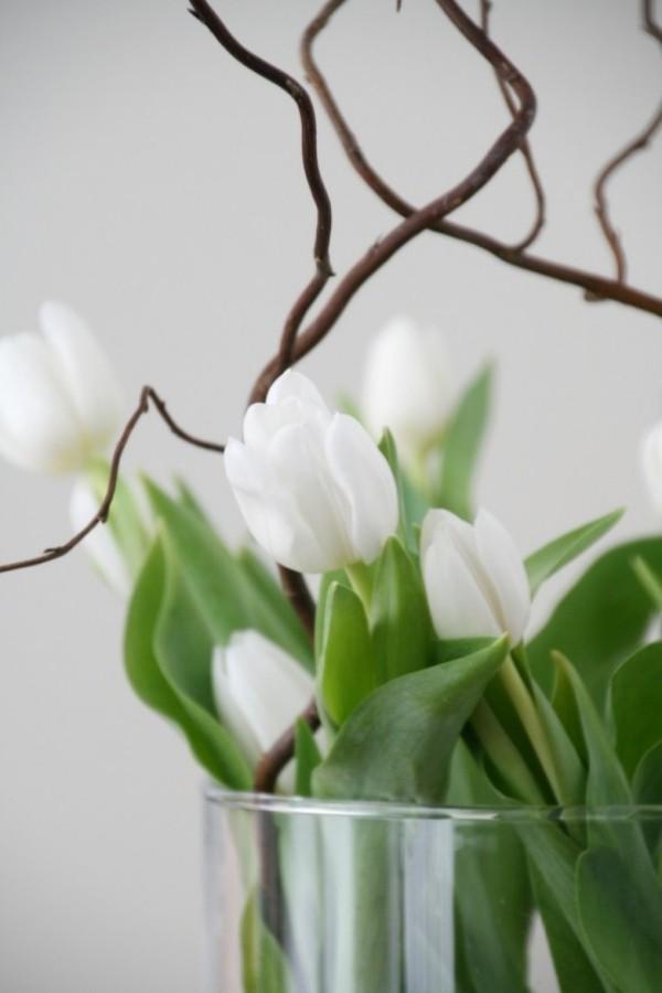 Tulpen im Interieur weiße Blüten in Vase aus Glas