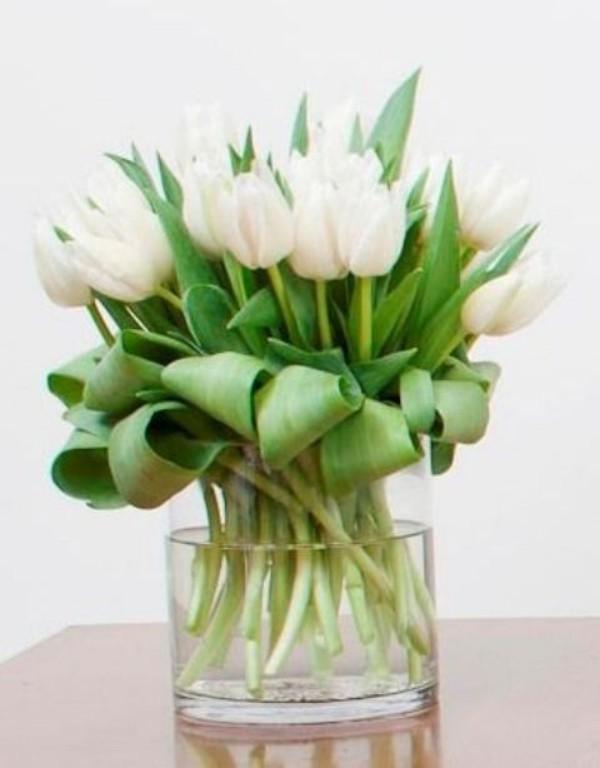 Tulpen im Interieur weiße Blüten symbolisieren die Unschuld
