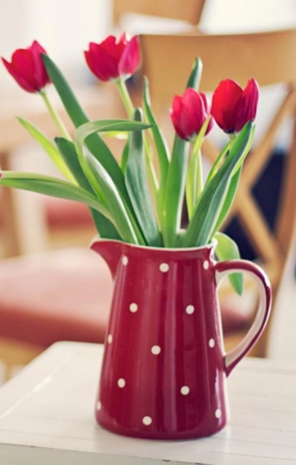 Tulpen im Interieur weinrote Blüten in weinroter Kanne