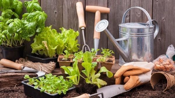 Vorbereitung auf die Gartenpflege