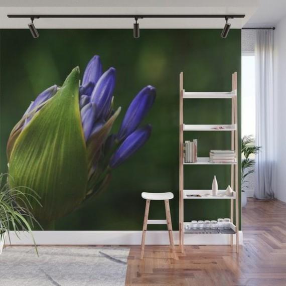 afrikanische lilie schmucklilie agapanthus africanus wandtapete