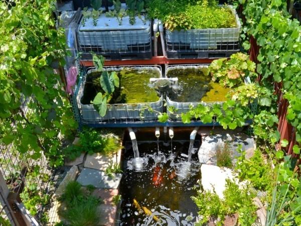 aquaponik nachhaltige gartenideen