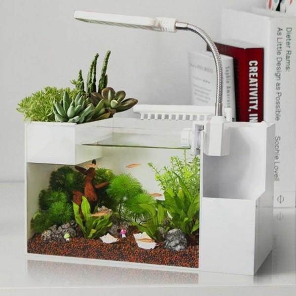 aquarium aquaponik system