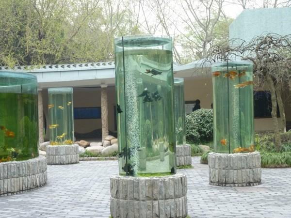 gartentrend aquaponik