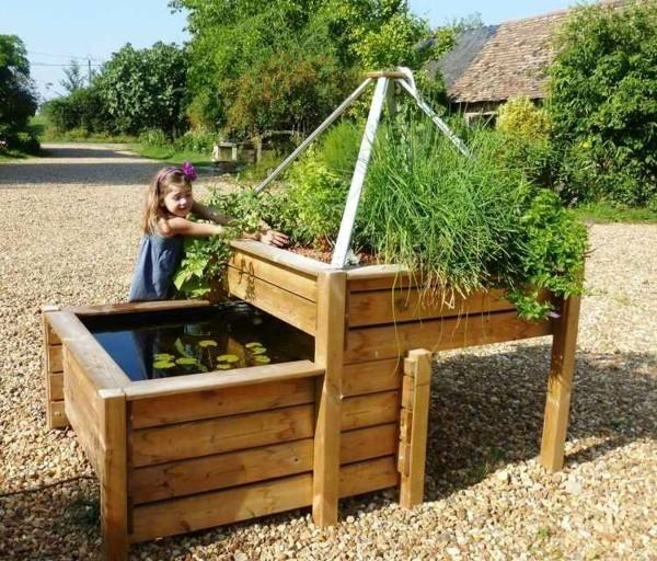 nachhaltiger gartentrend aquaponik