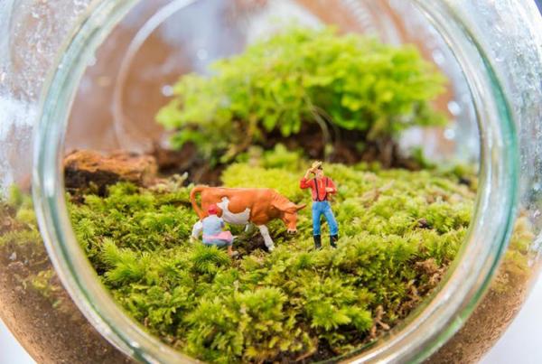 Gartentipps für jedermann Einmachglas dekorieren