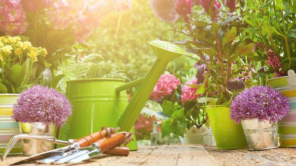 Gartentipps für jedermann schöne Zeit draußen verbringen