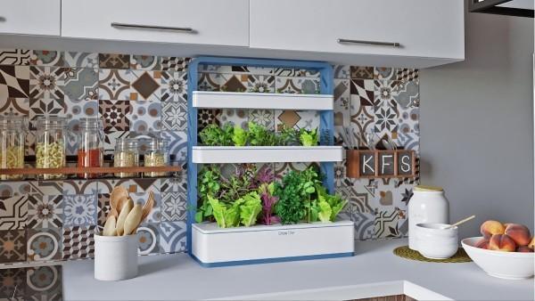 Innovationen im Küchenbereich - vertikaler Garten