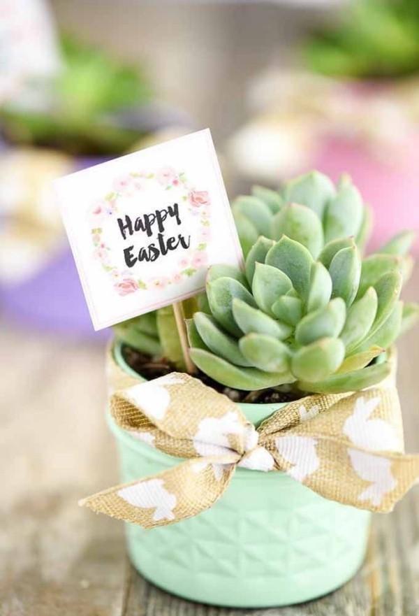 Kaktus und andere Ideen für Ostern Geschenke