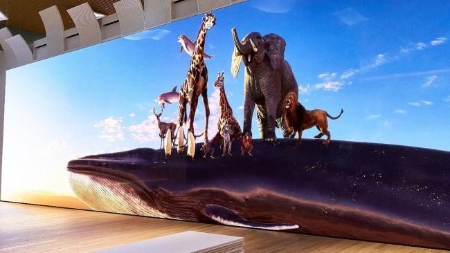 Sony zeigt erstes 16K Display, das großer als ein Bus ist tierwelt lebensgroß zeigen