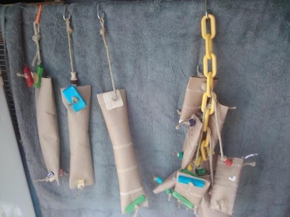 Spielzeug Wellensittiche basteln Klopapierrollen Vogelspielzeug