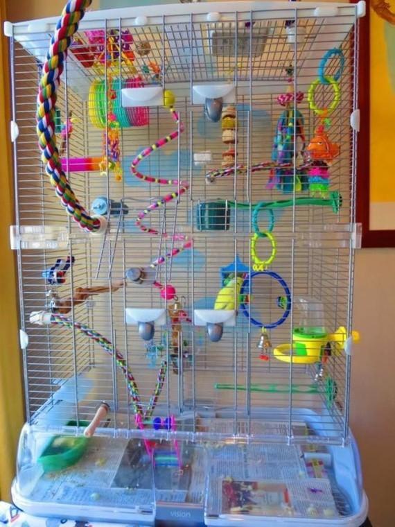 Spielzeug für Wellensittiche Zubehör Wellensittich Spielplatz