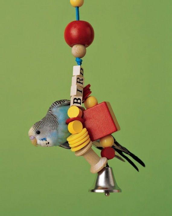 Wellensittich Spielzeug selber bauen