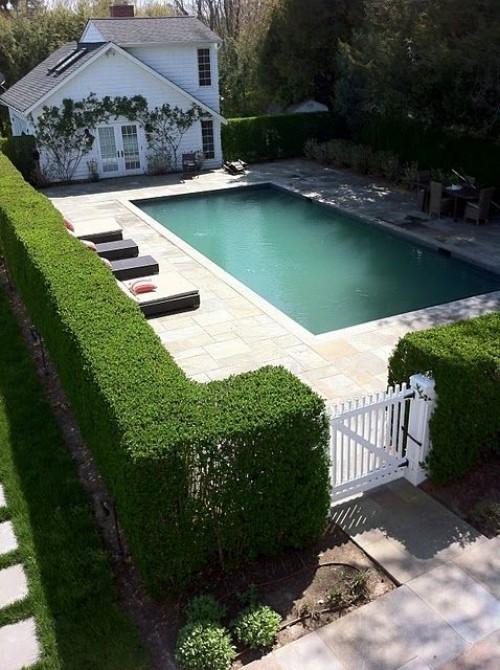 Zaun um Pool Ideen grüne Wand ästhetische Funktionen guter Sichtschutz