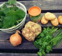 Brennnesselsuppe selber zubereiten: ein einfaches Rezept mit vielen Variationen