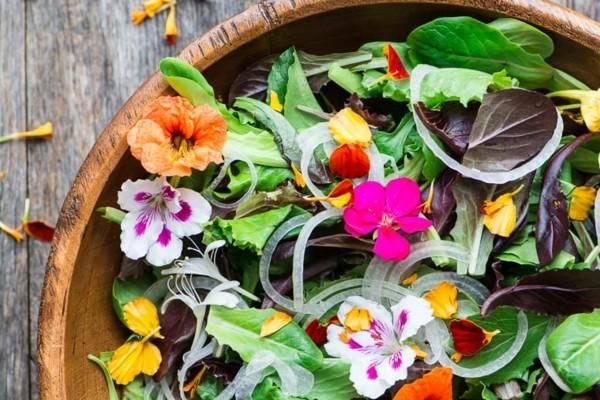 essbare blüten salat